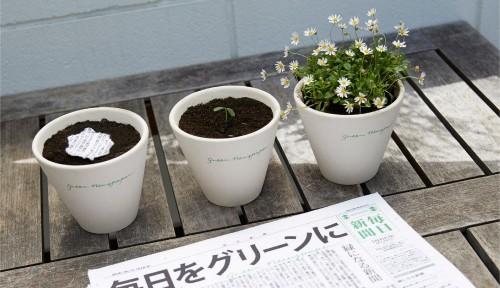 Green-newspaper-3.jpg
