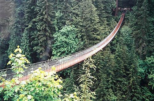صور اكبر جسر