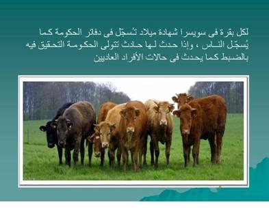 صور مفيدة  للحيوانات 2433.png