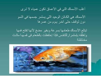 صور مفيدة  للحيوانات 2440.png