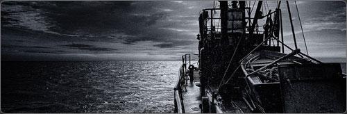 سفينة النجاة