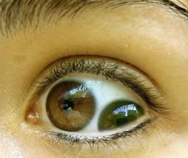 عيون غريبه