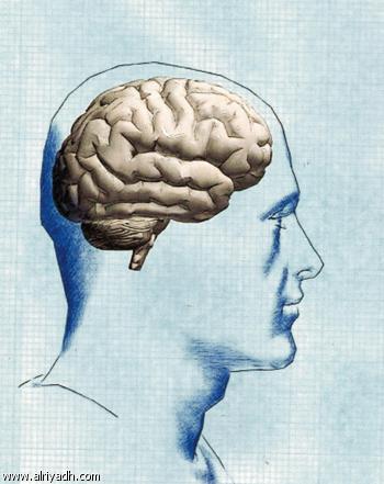 معلومات رائعة عن جسم الانسان image_1316242931_477
