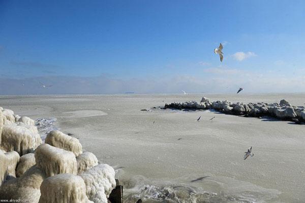 البحر الاسود يتجمد لاول مرة منذ 30 سنة Image_1342277924_818