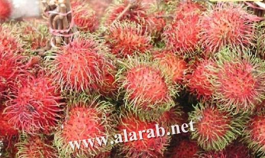 فواكه وخضر غريبة image_1303052067_738